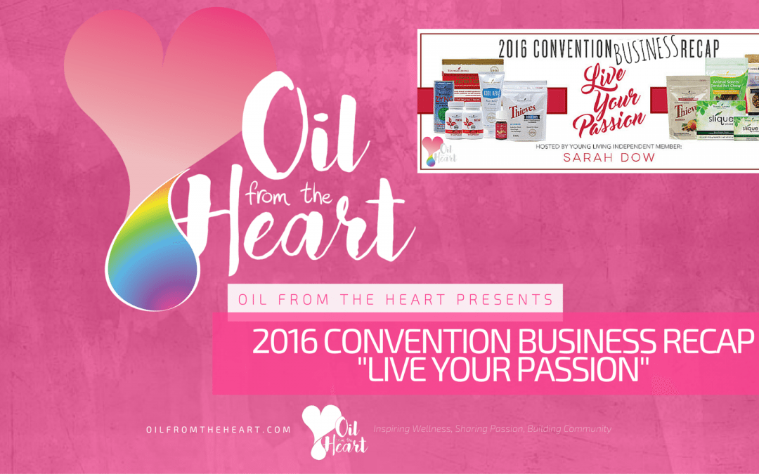 2016 Convention Business Recap